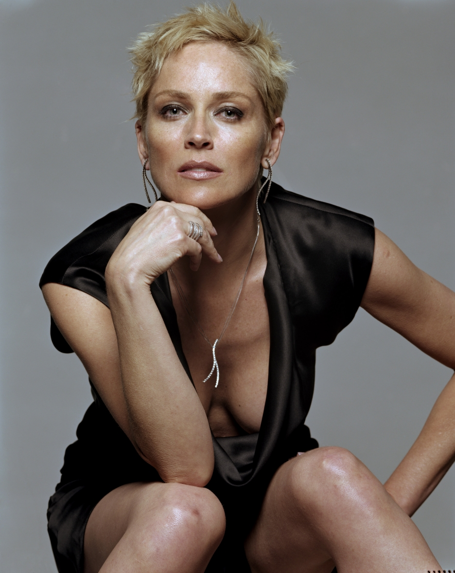 Sharon stone nude party picture 726